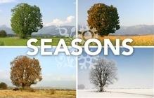 seasonssmall.jpg